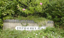 Fitzmaurice Place